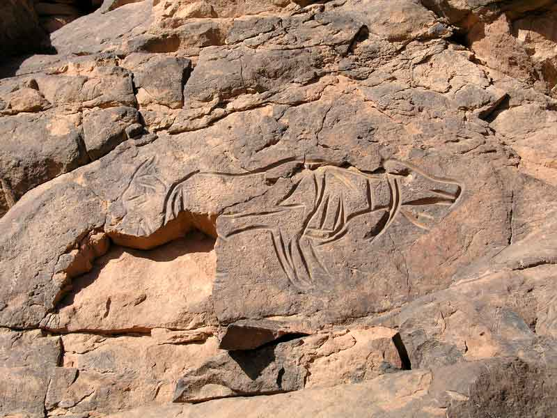 L'arte rupestre sahariana, ritorno a uadi Mathendush