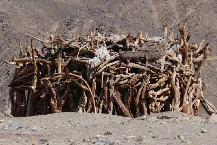 capanna dei nomadi beja